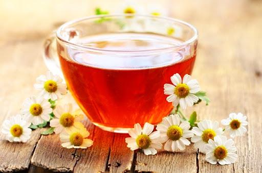 Польза и вред чая с ромашкой