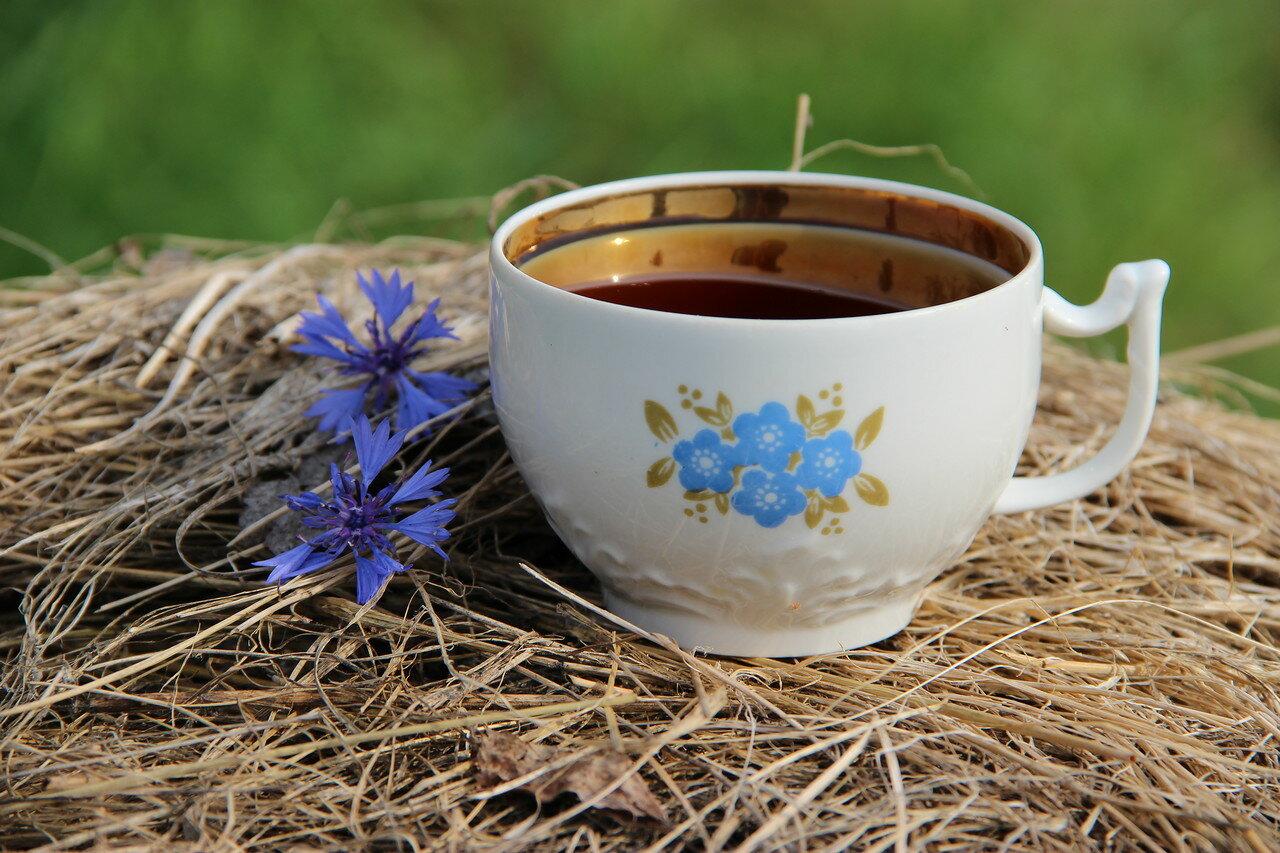 Чай с васильком