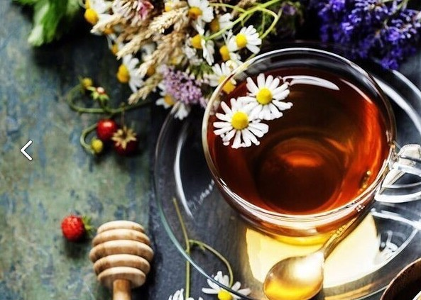 Чай, растущий под ногами