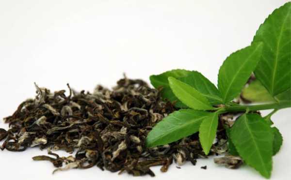 Чай и здоровые волосы