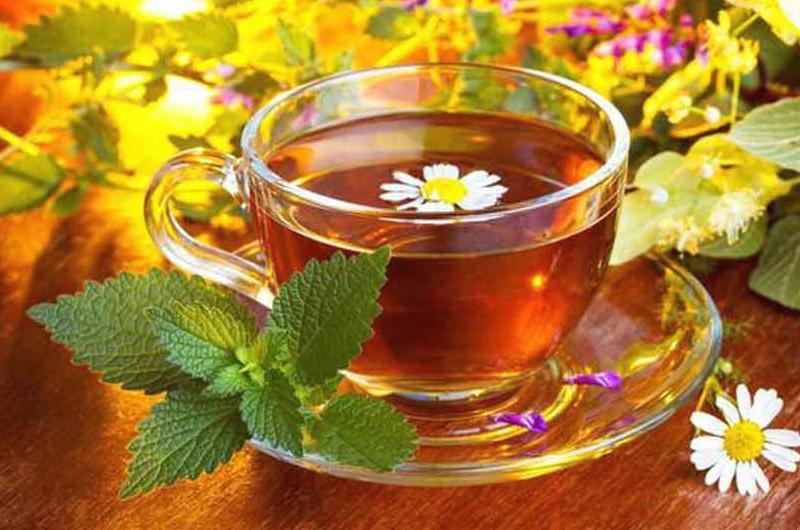 Чайный исследователь Анна Бречалова раскрыла ранее неизвестные свойства травяного чая