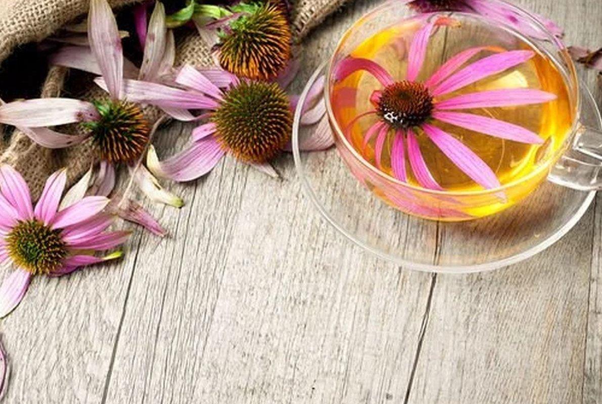 Чай, который укрепляет иммунную систему и подавляет раковые клетки