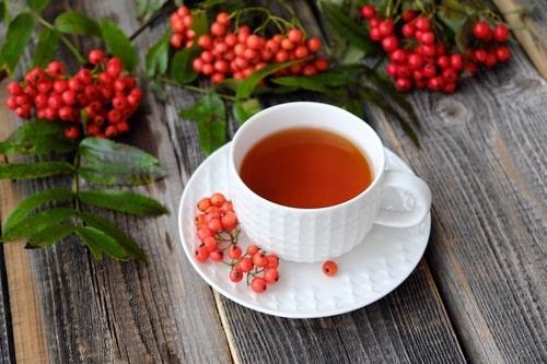 Зеленый чай и рябина: чем полоскать горло для защиты от коронавируса?