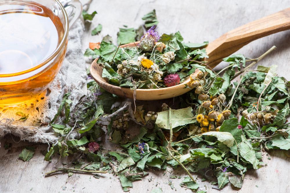 Гид по травяным чаям для начинающих