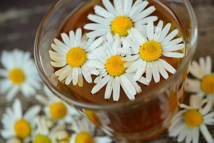 Травяные чаи – разнообразие вкуса и пользы
