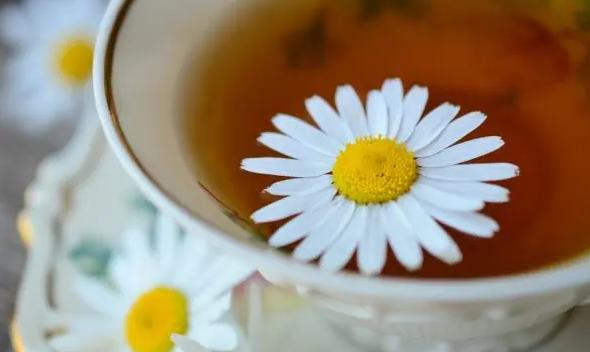 Выпей и успокойся: 5 лучших чаев от стресса