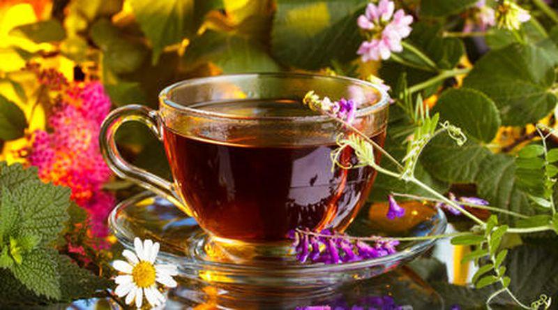 Злоупотребление травяным чаем вредит печени и может спровоцировать рак