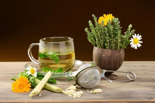 Очищение почек: чай с лимоном, мед и можжевельник