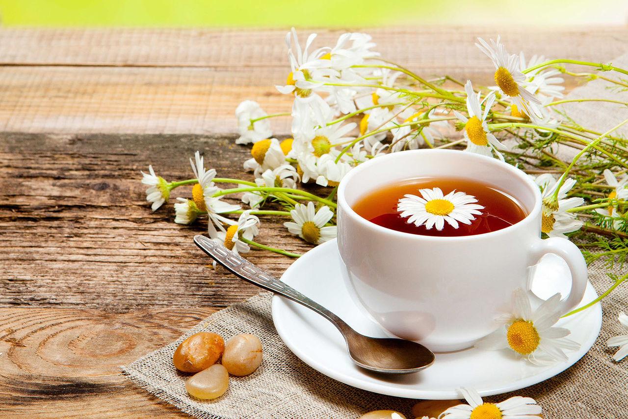 Ромашковый чай продлевает жизнь