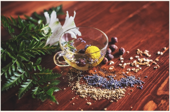 Травяные чаи для улучшения кровообращения в ногах