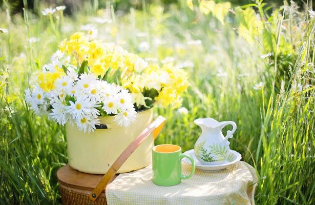 Этот чай эффективен для снижения уровня сахара в крови