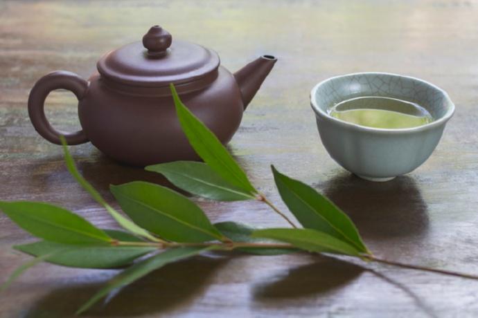 После ужина: чай с травами как источник вдохновения