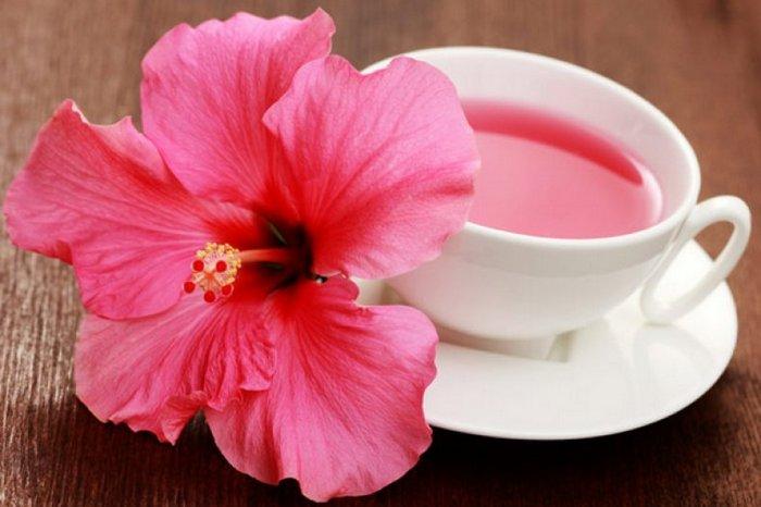Чай из гибискуса как средство оздоровления: 5 причин начать его пить