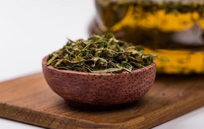 О пользе конопляного чая при бессоннице, расстройствах пищеварения и низком иммунитете