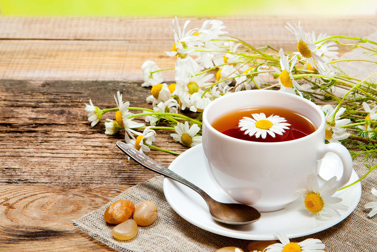 Ромашковый чай продлевает жизнь?