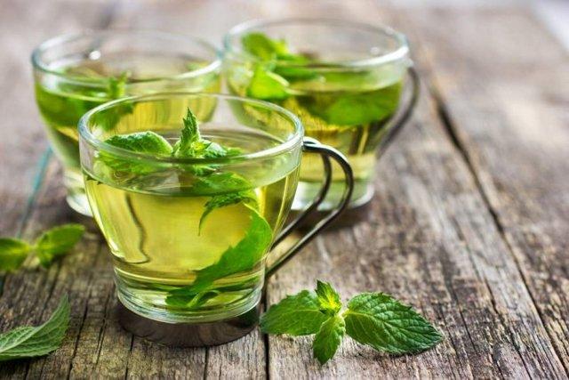 Мятный чай полезен для памяти